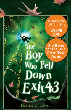 The Boy Who Fell Down Exit 43 cover